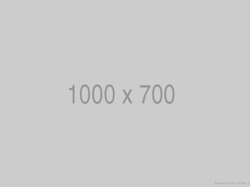 1000x700